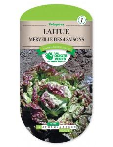 Laitue MERVEILLE DES 4 SAISONS