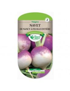 Navet DE NANCY A FEUILLE ENTIERE