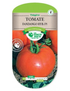Tomate FANDANGO HYB.F1