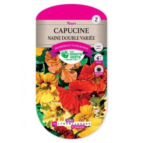 Capucine NAINE DOUBLE VARIEE