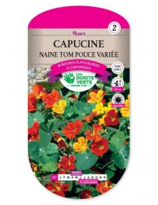 Capucine NAINE TOM POUCE VARIEE