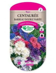 Centaurée BARBEAU DOUBLE VARIEE