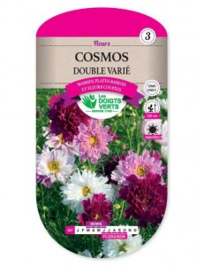 Cosmos DOUBLE VARIE