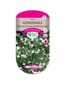 Gypsophile ELEGANT BLANC PUR ROI DES HALLES