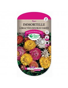 Immortelle A BRACTEES DOUBLES VARIEE