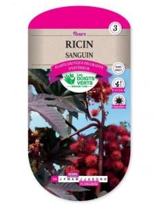 Ricin SANGUIN