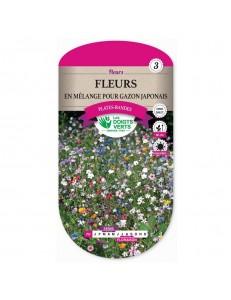 Fleurs EN MELANGE POUR GAZON JAPONAIS