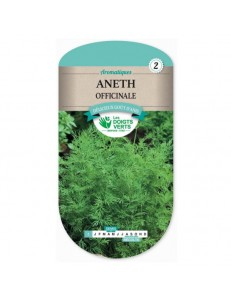 Aneth OFFICINALE