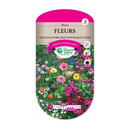 Fleurs ANNUELLES EN MELANGE POUR BOUQUETS FRAIS