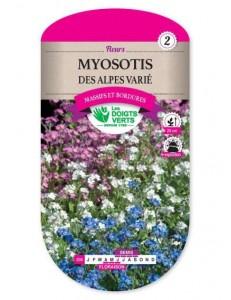 Myosotis DES ALPES VARIE