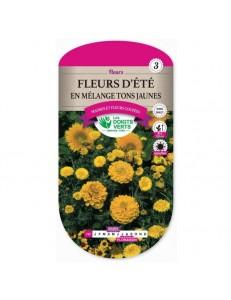 Fleurs d'été EN MELANGE TONS JAUNES