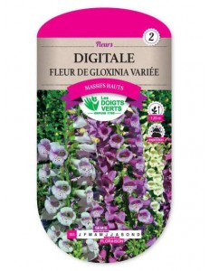 Digitale FLEUR DE GLOXINIA VARIEE