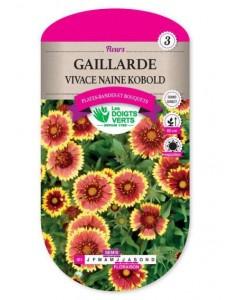 Gaillarde VIVACE NAINE KOBOLD