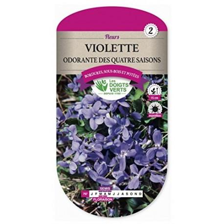 Violette ODORANTE DES QUATRES SAISONS