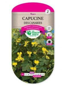 Capucine DES CANARIES