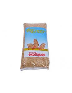 Graines pour Exotiques 4Kg