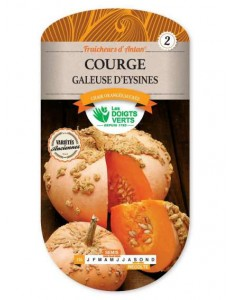 Courge GALEUSE D'EYSINES