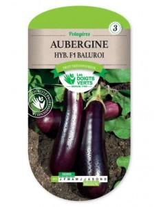 Aubergine HYB. F1 BALUROI