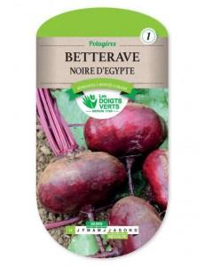 Betterave NOIRE D'EGYPTE