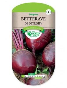 Betterave DE DETROIT 3